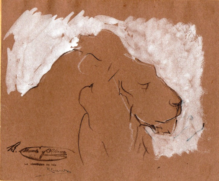 Sketch of a lion's hed on profile