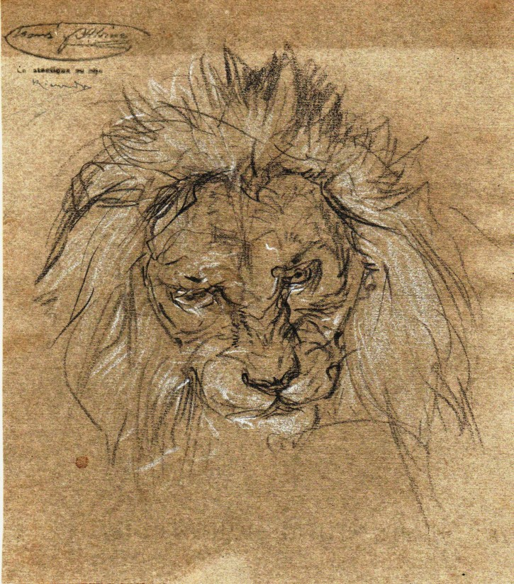 Sketch of a lion head
