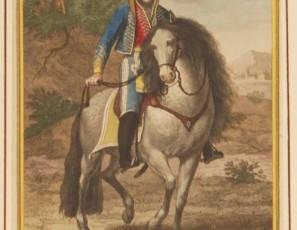 Dn. Francisco Abad y Moreno. Chaleco. Coronel de los Exercitos Nacionales de España