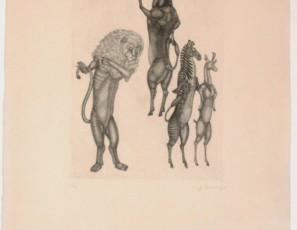 Lion, bull, zebra and antilope