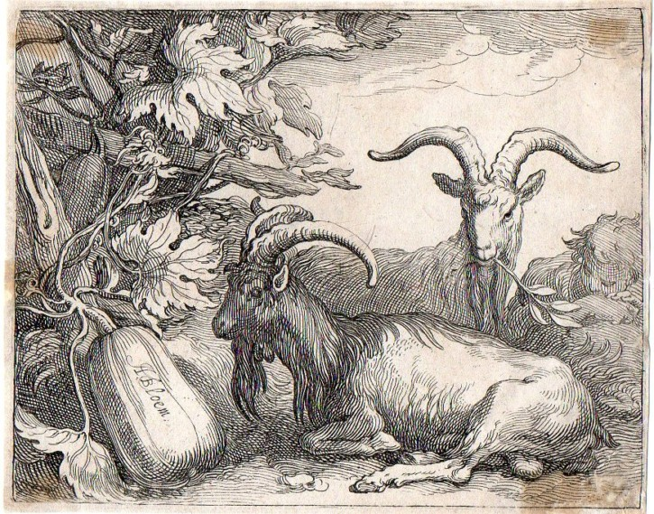 Sheep and shepherds