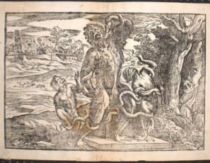 Caricatura del Laoconte