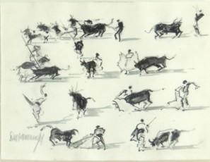 Bullfighting steps