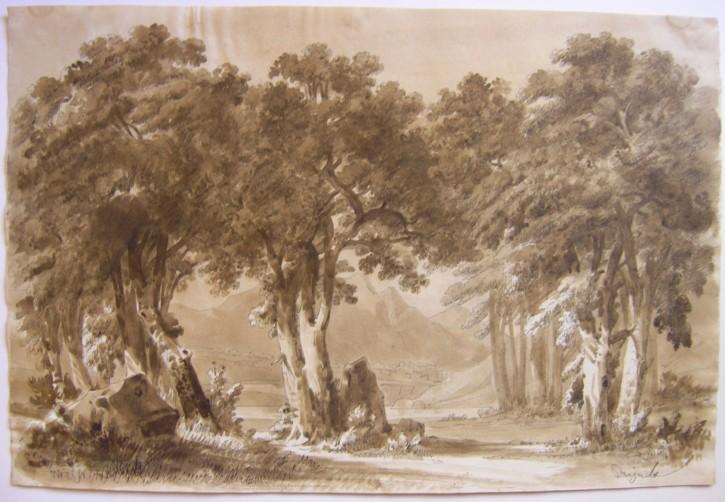 Landscape (Rigalt i Farriols, Lluís) - Circa 1850 - [Views and landscapes, Catalonia, XIX, Plume and sipia gouache, Wove paper]