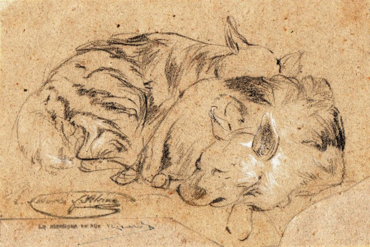 Licaons (Martí Alsina, Ramón) - Circa 1862 - [Animals, Catalonia, XIX, Charcoal and clarion, Laid paper]