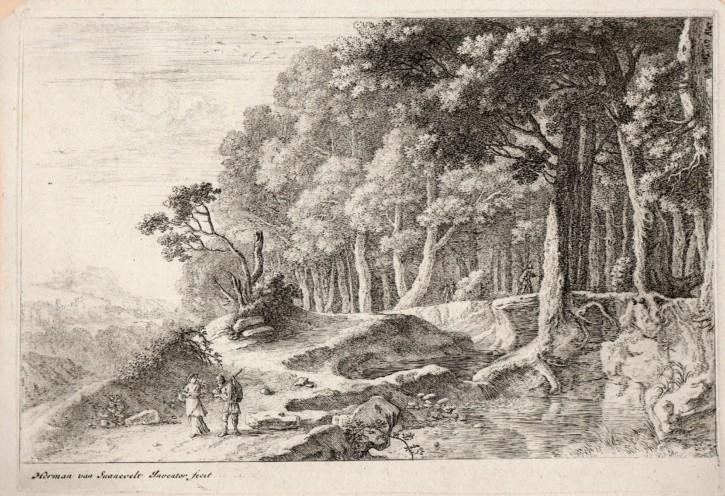 Bosque bordeado por un riachuelo