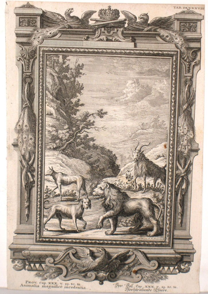 Several animals (Pfeffel, Johann Andreas) - 1731-1735 - [Animals, Germany, XVIII, Etching and burin, Laid paper]